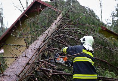 Feuerwehr kappt Baumstamm nach Sturmschaden